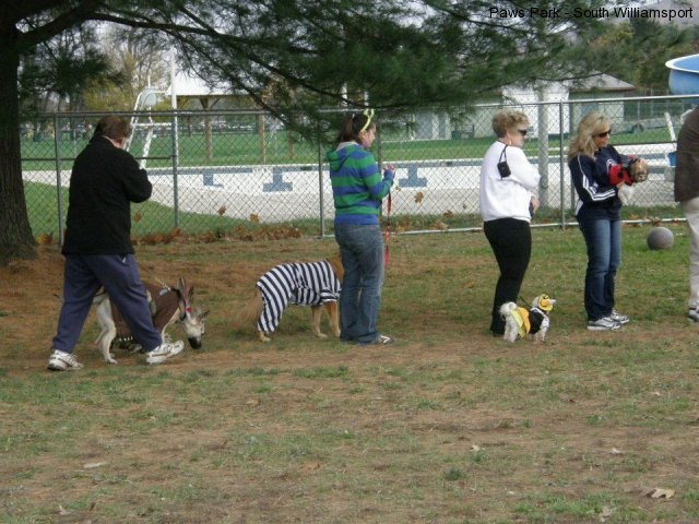 2nd ANNUAL K-9 COSTUME PARTY PICS BY CINDY STRAUB
