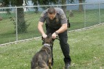 SW K-9 POLICE DEMO AT 2nd ANNUAL K-9 COSTUME PARTY PICS BY CINDY STRAUB