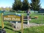 swpawspark-cleanup-2012-8